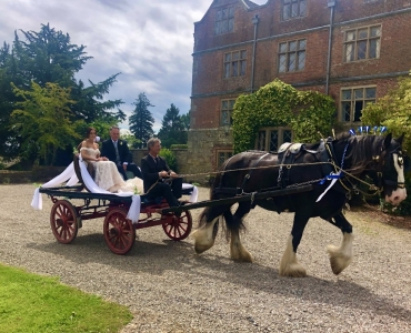 Horse-drawn bride in front of Acton Scott Hall